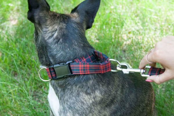 Light Weight Premium Wool 1-Inch Tartan Dog Collar and Leash Set