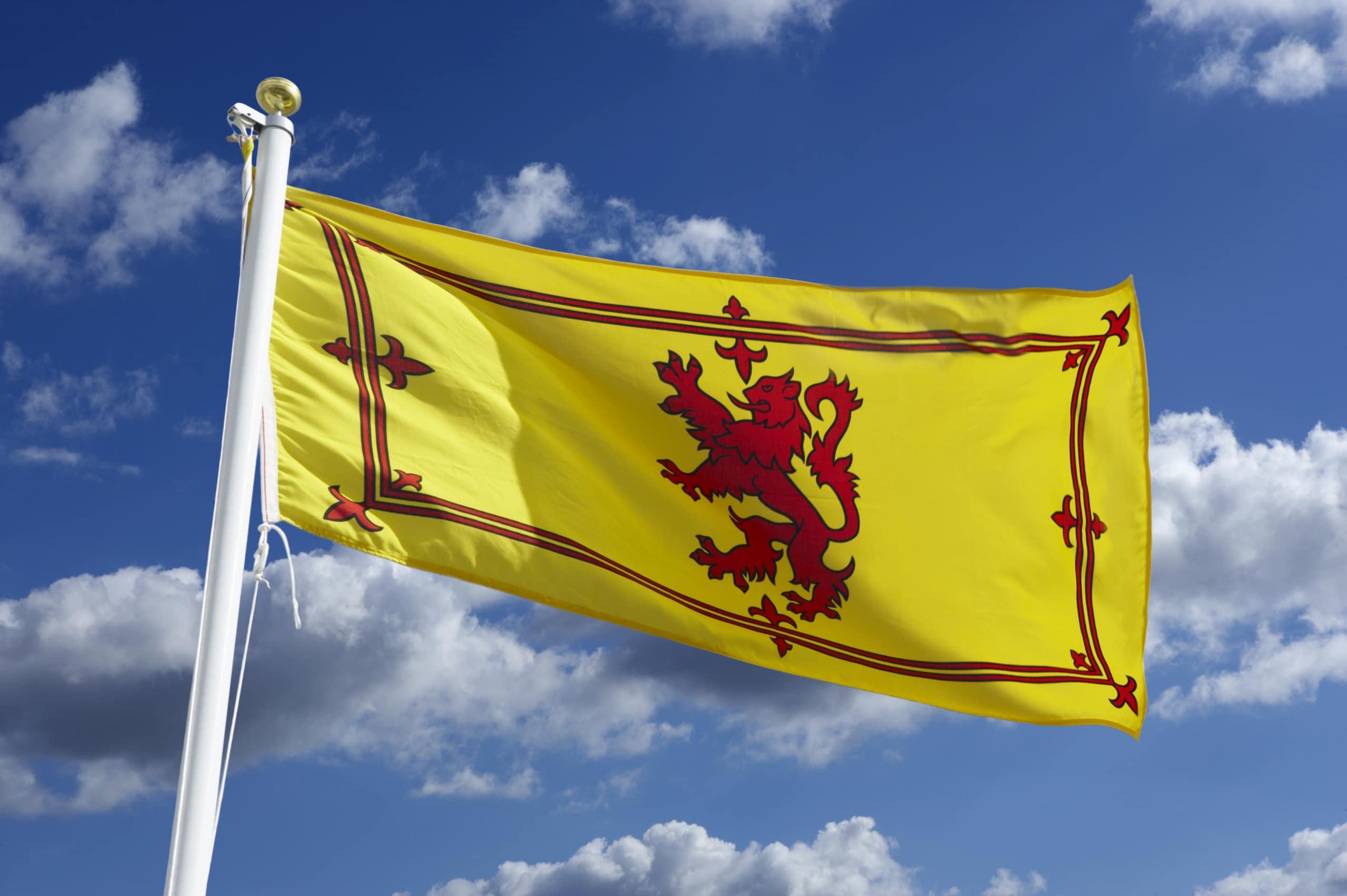 The Scottish Lion Rampant Flag