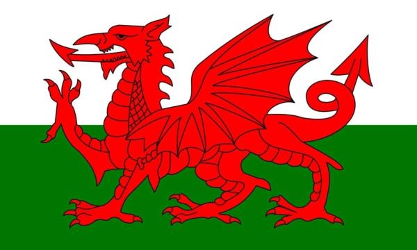 Welsh Dragon Flag