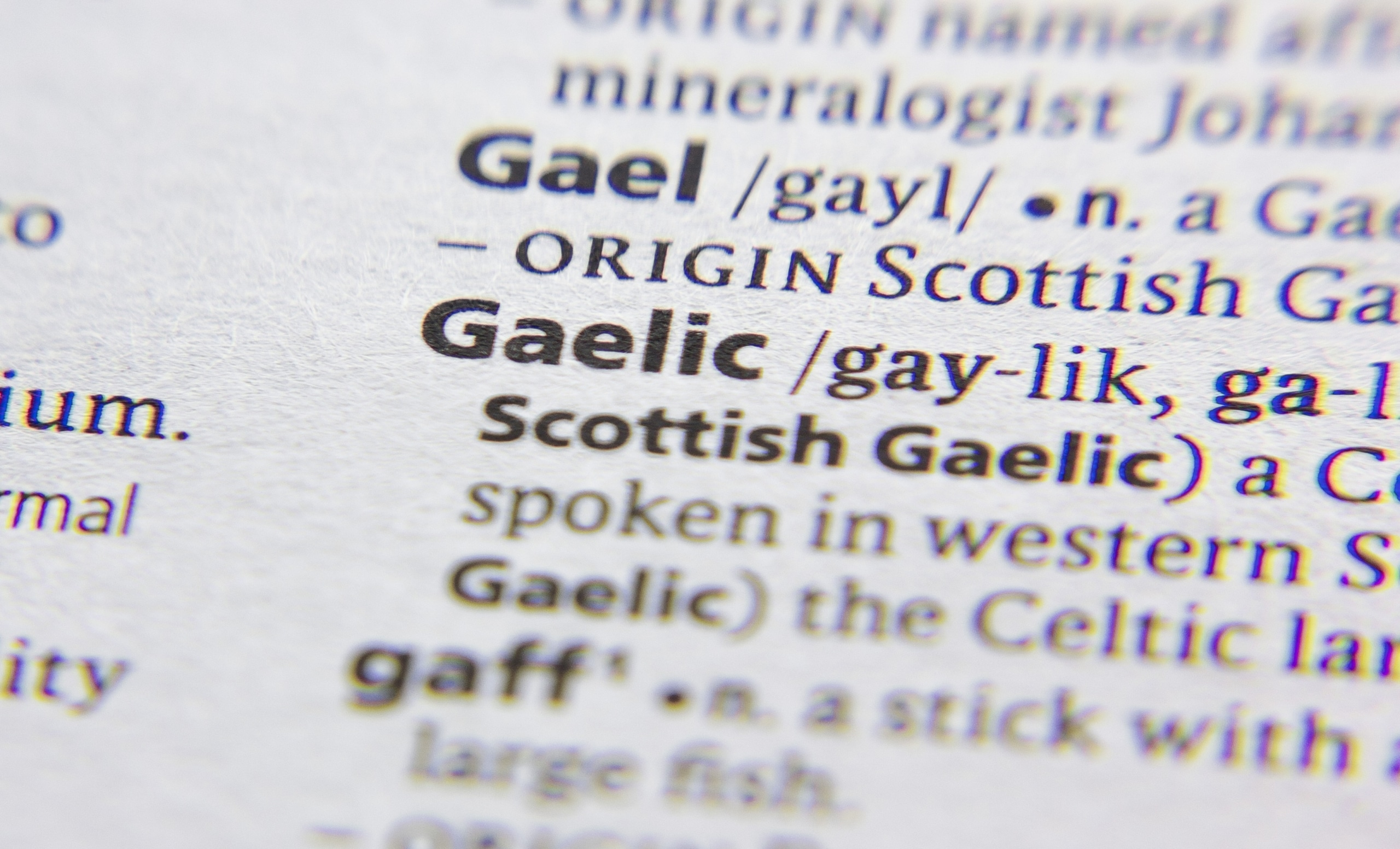 "The word ""Gaelic"" defined in a dictionary"