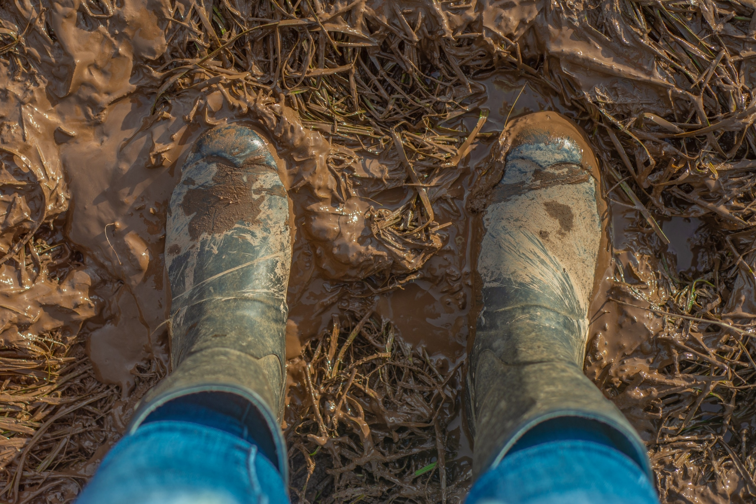 Wellington boots covered in mud